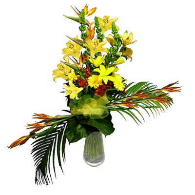 Vendita di fiori e piante online share the knownledge for Fiori e piante online