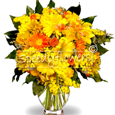 Bouquet of gerberas and mimosa for Women's Day