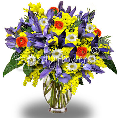 Bouquet di Iris Mimosa e Margherite
