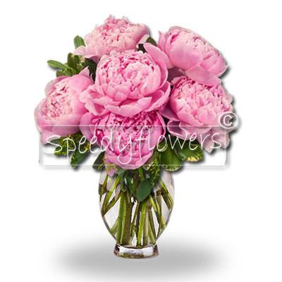 Scopri come è semplice inviare fiori di Peonia in giornata a Roma. Bastano pochi click.