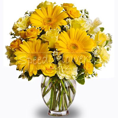Discover how easy it is to send flowers during the day in Italy or the world. Just a few clicks.