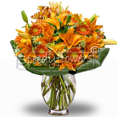 Elegant bouquet of flowers to be sent to do your best wishes to your loved ones. Wonderful gift
