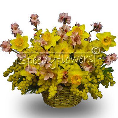 Profumato cestino primavera e mimosa per la festa della donna