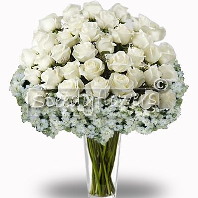 Fifty white Roses