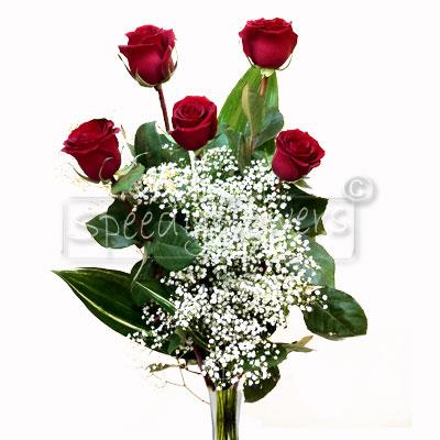 Cinque Rose Rosse