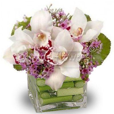 Composizione di Orchidee Cymbidium in vaso di vetro