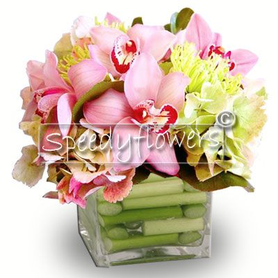 Composition of orchids in glass vase.