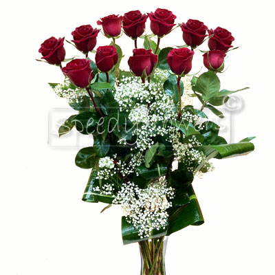 Choose our selling offer of twelve red roses that make her happy