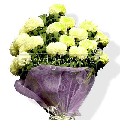 Mazzo di crisantemi per defunti - Crisantemi in vaso ...