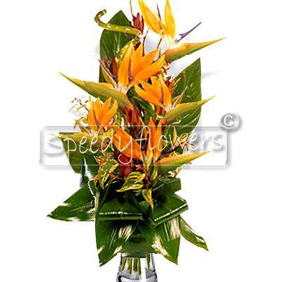 Inviare fiori on line onomastico mazzo di sterlizie for Progetti di costruzione del mazzo