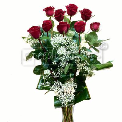 Nine Red Rose
