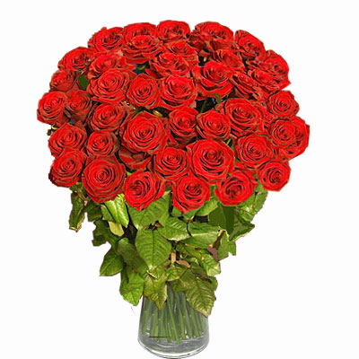 Special arrangement of one hundred red roses to give to your beloved.
