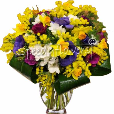 Giving Bouquet of spring flowers and mimosa