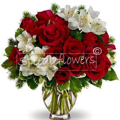 Bouquet of Red Roses for Christmas