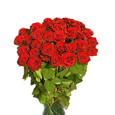 Trentasei Rose Rosse