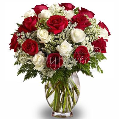 Consegna di rose rosse e bianche per san valentino for 20x20 costo del mazzo
