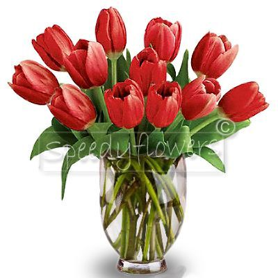 Red Tulips Bouquet for Degree