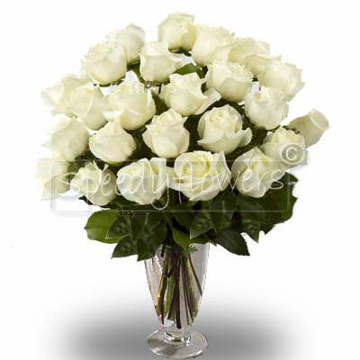 Twenty-four white roses