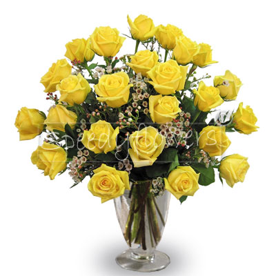 Twenty-four yellow roses