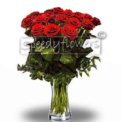 Twenty-four red roses